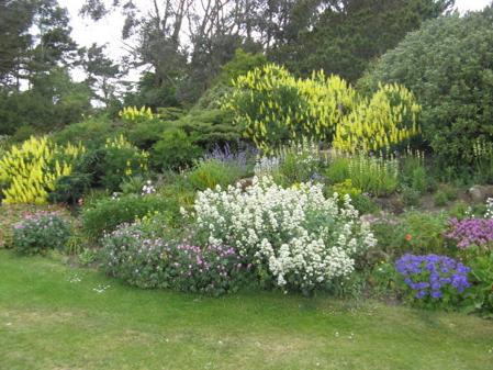 EBS-Places of Interest-Barnhill Rock Garden